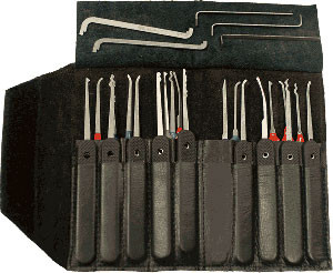 20 Pc. Government Steel Pick Set