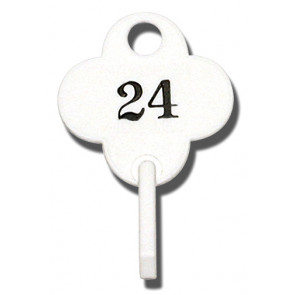 Numbered Loaner Tags(Up to 500)In preset increments of 20