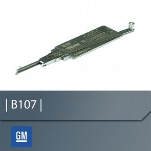 GM (B107) Reader